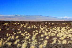 ハワイ島 ダニエル・K・イノウエ・ハイウェイからのマウナ・ケア山の写真素材 [FYI02355635]