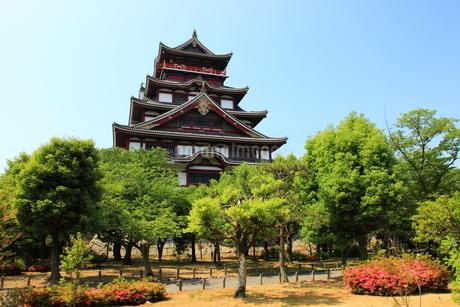 新緑の京都 伏見城天守閣の写真素材 [FYI02355674]