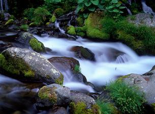 川俣川の流れの写真素材 [FYI02355952]