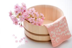 桜と桶の写真素材 [FYI02356106]