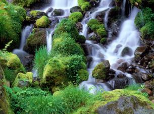 吐竜の滝の写真素材 [FYI02356119]