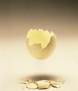 たまごの殻の写真素材 [FYI02356350]