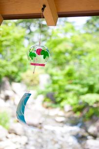 風鈴と新緑の写真素材 [FYI02356488]