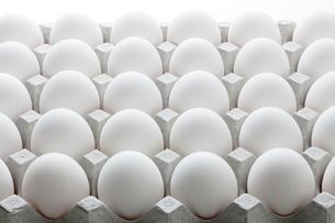 ケース入り卵の写真素材 [FYI02356513]