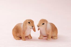 白バックのウサギの小物の写真素材 [FYI02356597]