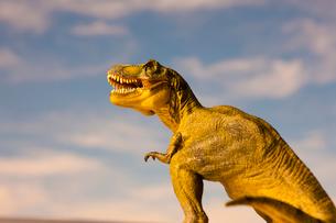 恐竜ティラノサウルスと空の写真素材 [FYI02356630]