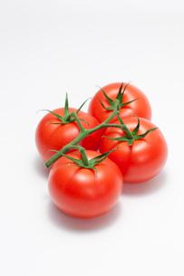 トマトの写真素材 [FYI02356676]