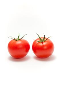 トマトの写真素材 [FYI02356681]
