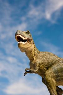 恐竜ティラノサウルスと空の写真素材 [FYI02356715]