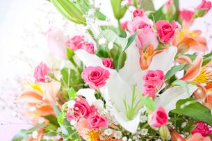 バラとカサブランカの花束の写真素材 [FYI02356770]