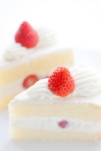 イチゴのショートケーキの写真素材 [FYI02356779]