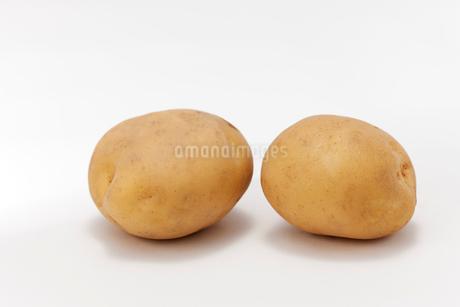 白バックの二個のジャガイモの写真素材 [FYI02357007]