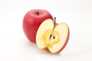 白バックのカットしたリンゴの写真素材 [FYI02357011]