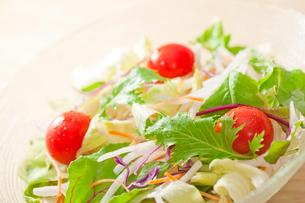 野菜サラダの写真素材 [FYI02357059]