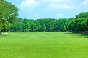ゴルフ場の写真素材 [FYI02357149]