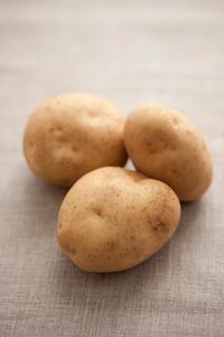 三個のジャガイモの写真素材 [FYI02357226]