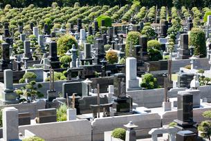 墓の写真素材 [FYI02357472]