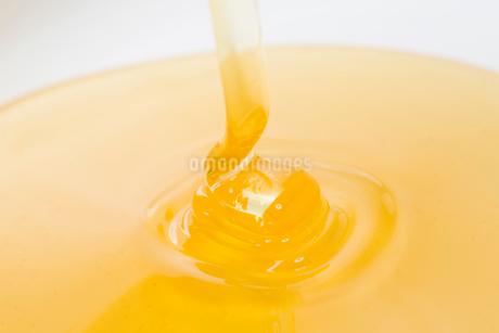 ハチミツの写真素材 [FYI02357682]