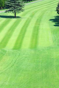 ゴルフ場の写真素材 [FYI02357805]