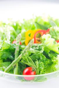 野菜サラダの写真素材 [FYI02357901]