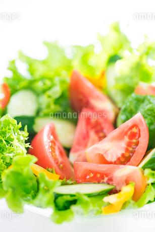 野菜サラダの写真素材 [FYI02357922]