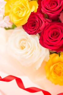 バラの花と赤いリボンの写真素材 [FYI02357934]
