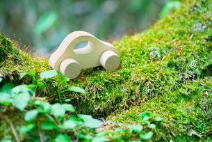 苔とミニチュアの木の車の写真素材 [FYI02357940]