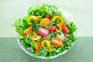 野菜サラダの写真素材 [FYI02357953]
