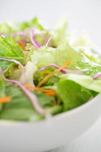 野菜サラダの写真素材 [FYI02358099]