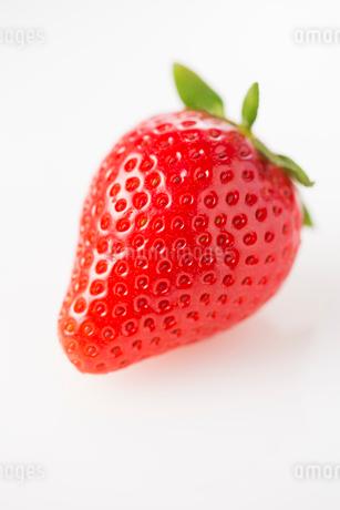 イチゴ やよいひめの写真素材 [FYI02358420]