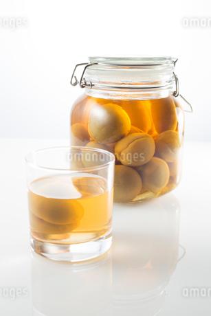白バックの梅酒の写真素材 [FYI02358451]