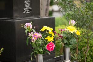 墓石と供花の写真素材 [FYI02358747]