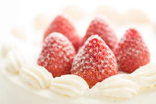 イチゴのケーキの写真素材 [FYI02358850]