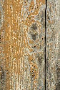 古い板の木目の写真素材 [FYI02359014]