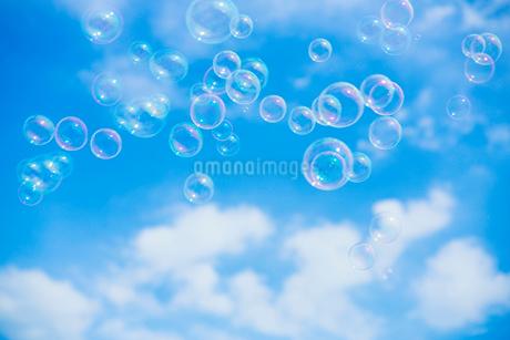 シャボン玉と青空の写真素材 [FYI02359069]