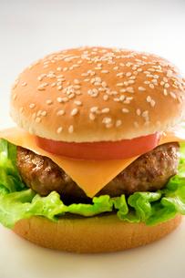ハンバーガーの写真素材 [FYI02359156]