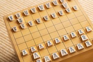 将棋の写真素材 [FYI02359243]