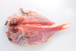 金目鯛の干物の写真素材 [FYI02359327]