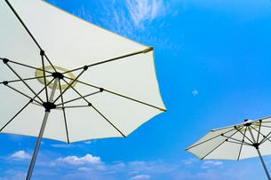 日傘の写真素材 [FYI02359329]