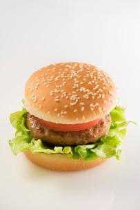 ハンバーガーの写真素材 [FYI02359411]