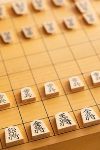 将棋の写真素材 [FYI02359418]
