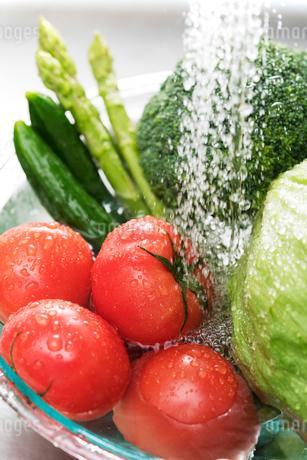 野菜を洗うの写真素材 [FYI02359442]