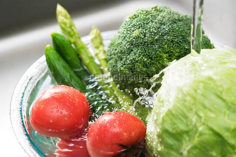野菜を洗うの写真素材 [FYI02359815]