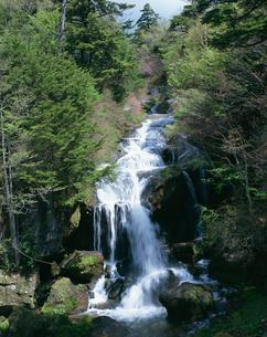 竜頭の滝の写真素材 [FYI02360919]