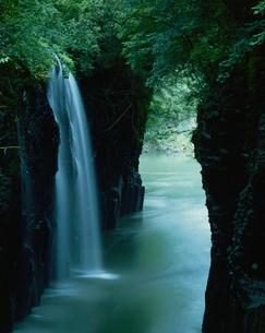 真名井の滝 五ヶ瀬渓谷の写真素材 [FYI02361808]