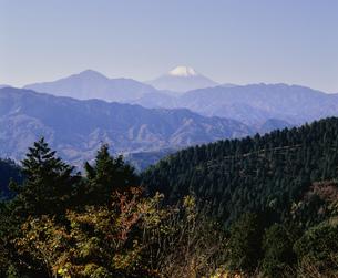 高尾山より望む富士山の写真素材 [FYI02362757]