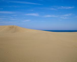 鳥取砂丘の写真素材 [FYI02362946]