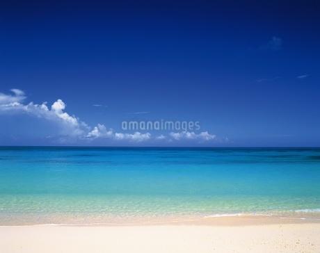 宮古島の砂浜の写真素材 [FYI02365541]