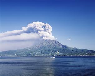 桜島の写真素材 [FYI02365944]