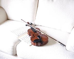 バイオリンの写真素材 [FYI02366093]